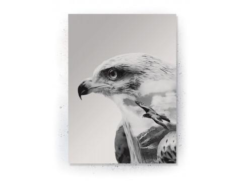 Plakat / Canvas / Akustik: Eagles (Off-White)