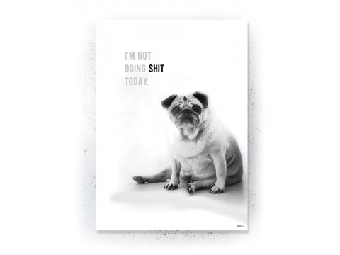 Plakat / Canvas / Akustik: I'm not doing shit today! (Animals)