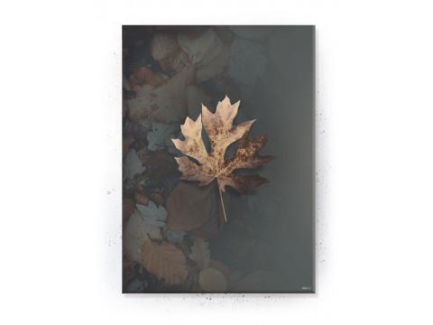 Plakat / canvas / akustik: Leaf 3 (Earth)