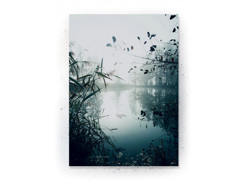 Plakat / CANVAS: Mist (Earth)