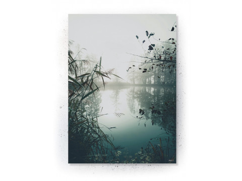 Plakat / Canvas / Akustik: MIST (Nature)