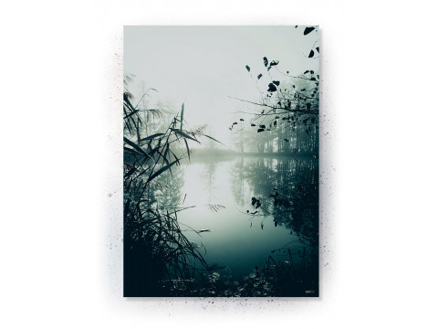 Plakat / Canvas: MIST (VIVID)