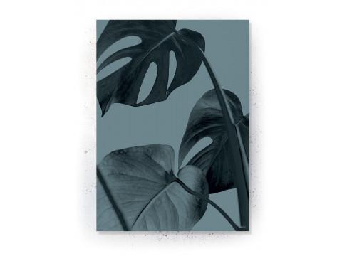 Plakat / Canvas / Akustik: Monstera plante (Thoughts)