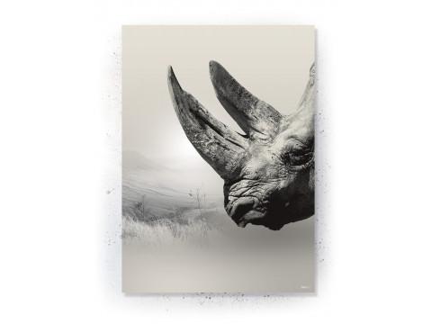 Plakat / Canvas / Akustik: Næsehorn II (Off-White)