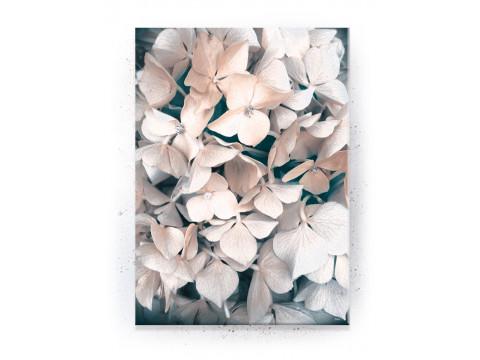 Plakat / Canvas / Akustik: White Flower (Empowerment)
