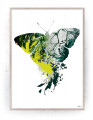 Plakat / canvas / akustik: Butterfly (Colorize / Life)