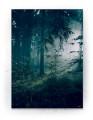 Plakat / canvas / akustik: Forest (Earth)