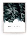 Plakat / Canvas / Akustik: Human Nature (Thoughts)