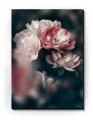 Plakat / canvas / akustik: Rosebush (Earth)