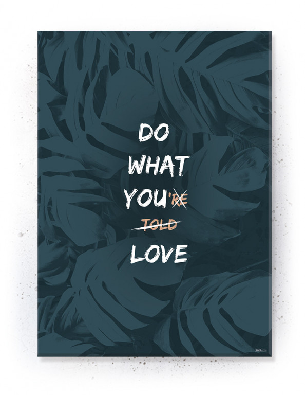 Plakat / canvas / akustik: Do What You Love (Dust)