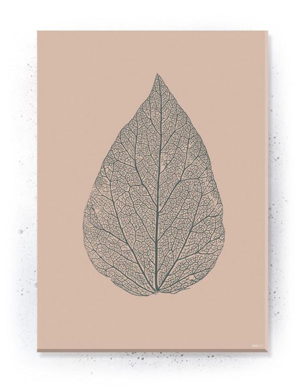Plakat / canvas / akustik: Skeleton Leaf II (Dust)