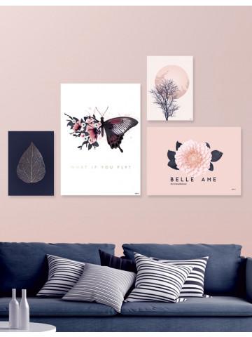 Plakat: Elg i sort / hvid