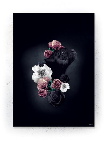 Plakat: Dagdrømme i sort / hvid