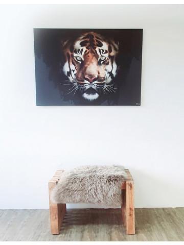 Spotpris / Canvas: Scar (Animals)