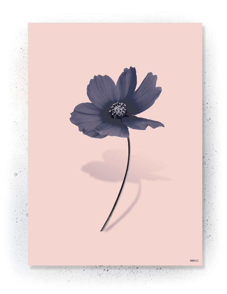 Plakat / canvas / akustik: Simpel blomst (MIDSOMMER)