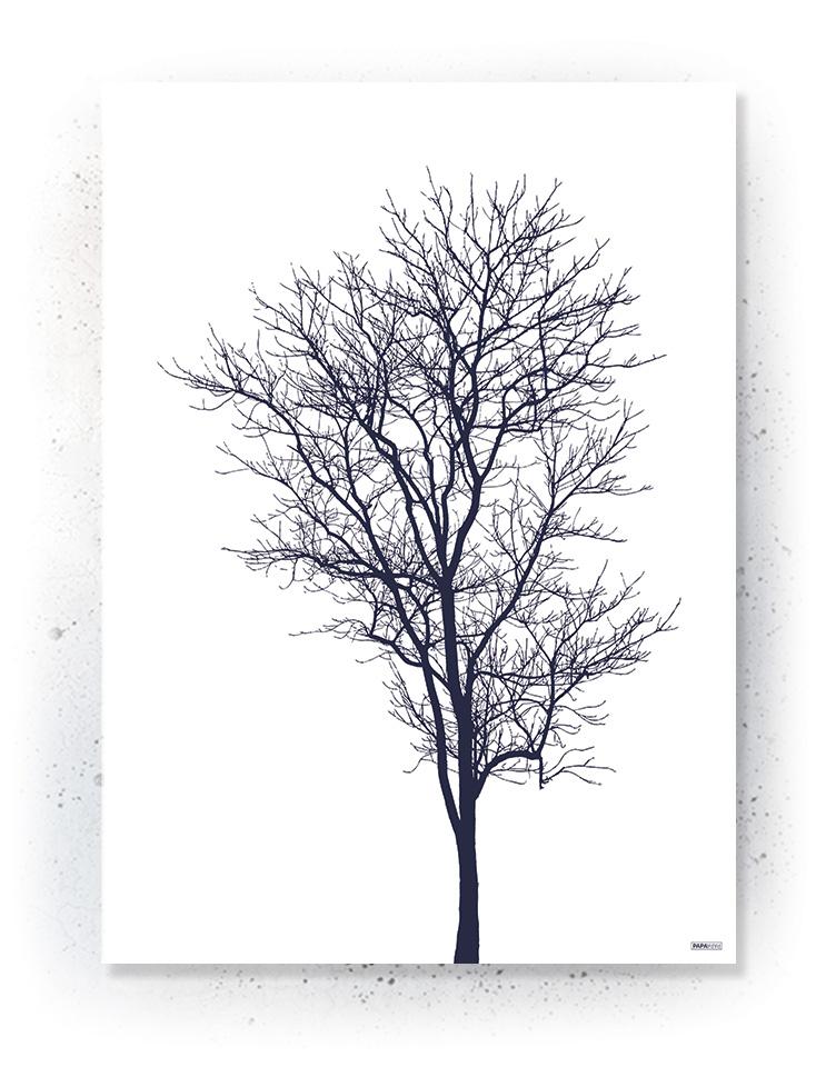 Plakat / canvas / akustik: Træ silhouette (MIDSOMMER)